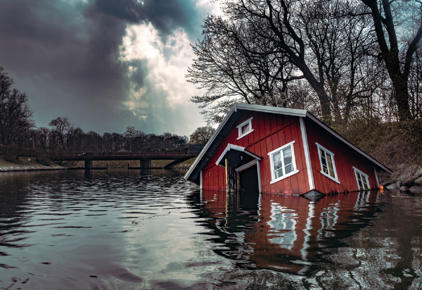 What to Know Before Buying Flood Insurance?