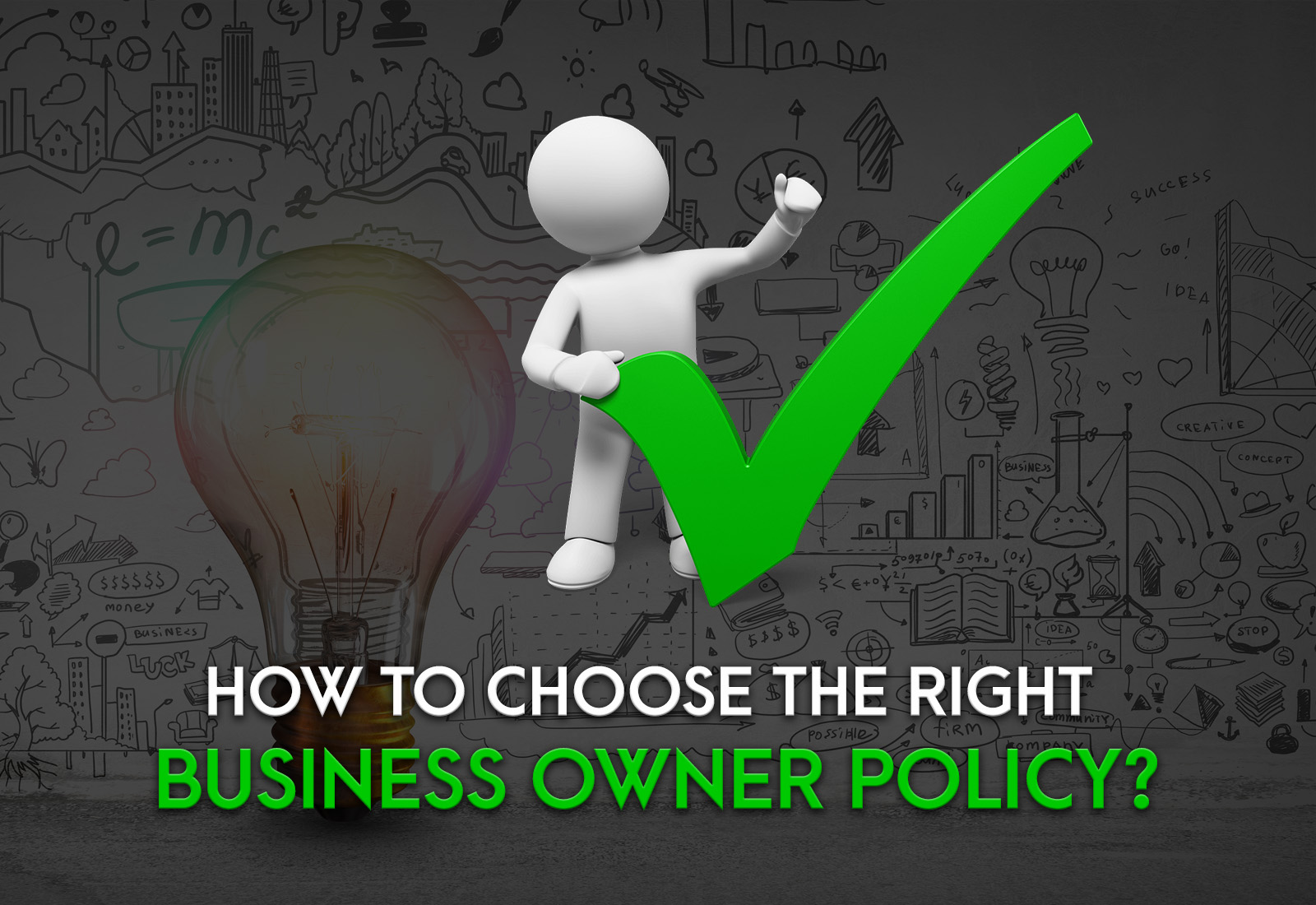 How to Choose the Right Business Owner Policy?